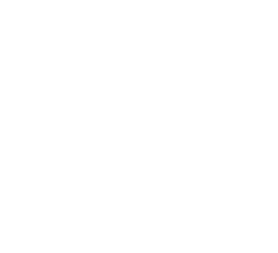 Finlands guideförbund